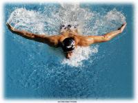 nageur.jpg